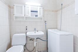 Erillinen wc, jossa pesukoneelle oiva tila