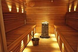 upea, v. 2014 remontoitu sauna