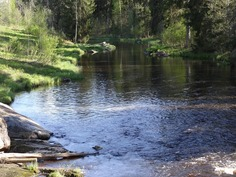 Läheiseen jokeen voi pulahtaa saunan jälkeen