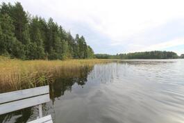 näkymä laiturilta järvelle katsottuna vasemmalle...ei näy naapuria