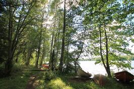 Lotilanjärvi aivan asuntojen tuntumassa