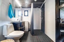 Kylpyhuone vuodelta 2014
