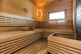 Tyylikäs ikkunallinen sauna