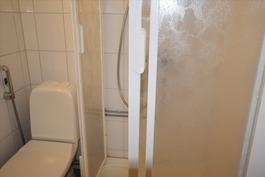 yksiön wc, jossa suihkukaappi