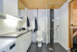 Kylpyhuone-kodinhoitotila on toimivan mallinen