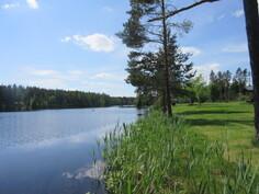 Kuvassa rantakiinteistön rantaviivaa ja Loukostenjärvi on myös puhdas vetinen järvi!