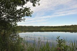 Puhdas ja kalainen Kotajärvi
