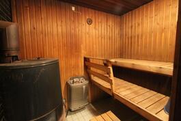 Edustustilan sauna.