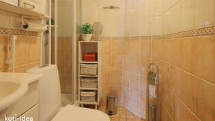 Erillinen WC jossa suihkukaappi I