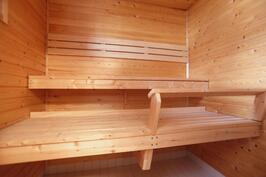 Asunto 2 sauna
