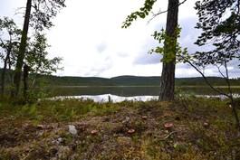 Järven eteläpäätä