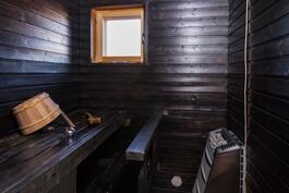 Tunnelmallinen tumma sauna