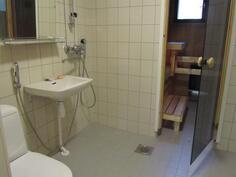 uusittu kylpyhyone/wc