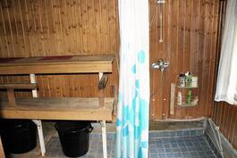 Puusauna ja suihku piharakennuksessa