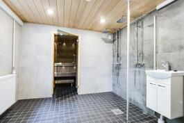 tilava kylpyhuone kahdella suihkulla kellarissa