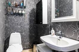 Erillinen wc, kuinka tyylikäs!