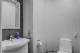 Erillinen wc, uusittu 2014