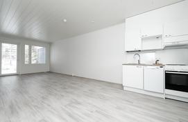 Olohuone ja keittiö yhtenäistä tilaa