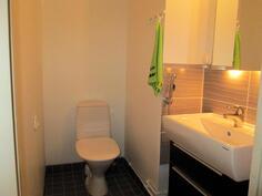 Kauniisti uusittu erillinen wc