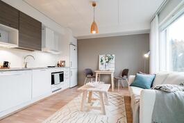 Asuinhuone ja keittotila