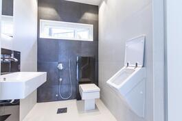 Tyylikäs alakerran wc