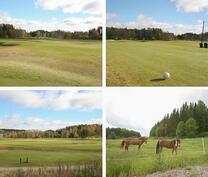 Golfkenttä ja ratsastusmahdollisuudet läheisyydessä.