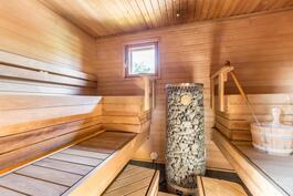 Mahtavan kokoinen sauna alakerrassa