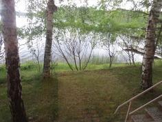 Näkymä keittiön ikkunasta järvelle