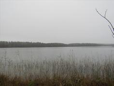 Näkymä Kuoreveden Savonselälle
