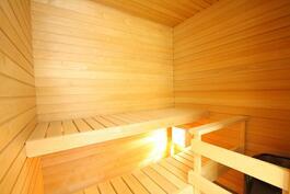 Esittelyhuoneisto A4 99,5m2 sauna