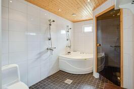 Kylpyhuoneessa myös poreamme