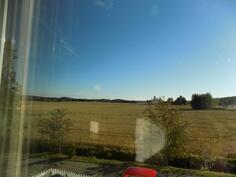 Näkymää ikkunasta