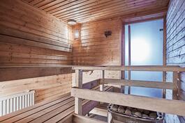 Uima-allassaunan lisäksi taloyhtiössä on myös toinenkin sauna.