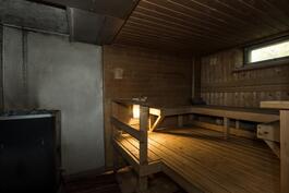 Erittäin tilava sauna, jossa puulämmitteinen kiuas