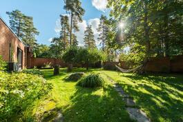 suojaisa eteläpuolen piha, jossa omenapuita, hevoskastanja ja pieni yrttimaa