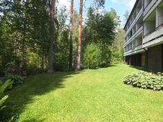 Myös taloyhtiön metsään rajautuva takapiha on hyvin hoidettu