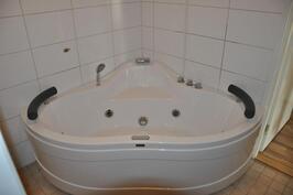 Kylpyhuoneen porea-allas