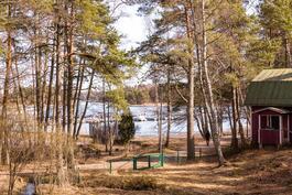 Näkymä asunnosta I13 noin 1. krs, tontin puut kaadetaan.