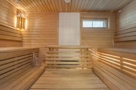 Tilava ikkunallinen sauna, sähkökiuas