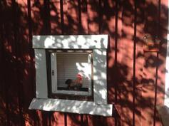 Vierasmajan pikku ikkuna
