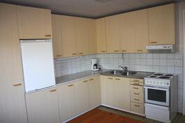 Alakerran asunnon keittiö