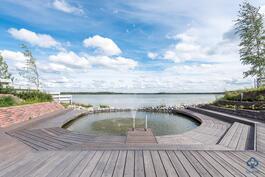 Uimalammikko ja järvi