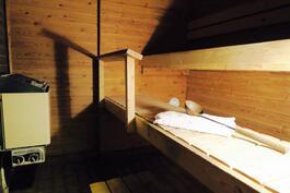Saunassa on sähkökiuas, myös hormi puukiukaalle on olemassa.
