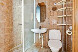 Saunan pesuhuone/ Tvättrummet.