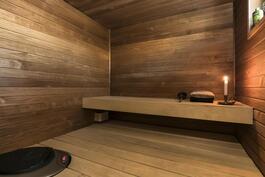 Tyylikäs sauna tasolauteilla sekä ainavalmis-kiukaalla