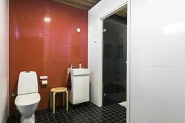 Kylpyhuoneessa myös saniteettikalusteet