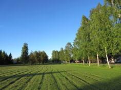 Kesäistä lisäkuvaa lähistöllä olevasta puistosta ja ...