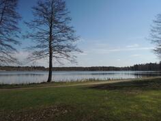 Kävelyreitille järven ympäri pääsee helposti yhtiön takapihalta