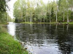 Joenrantaa
