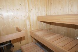 oma, v. 2015 tehty sauna